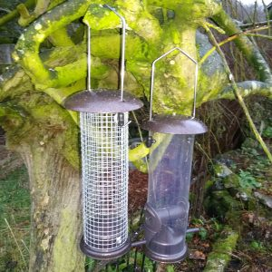 Standard Bird Feeders