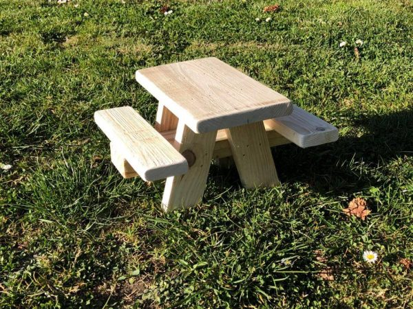 Bird Squirrel Picnic Table 1