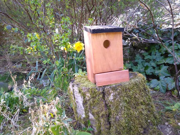 Bird Nest Box.