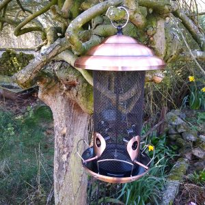 Bird Seed Feeder XL