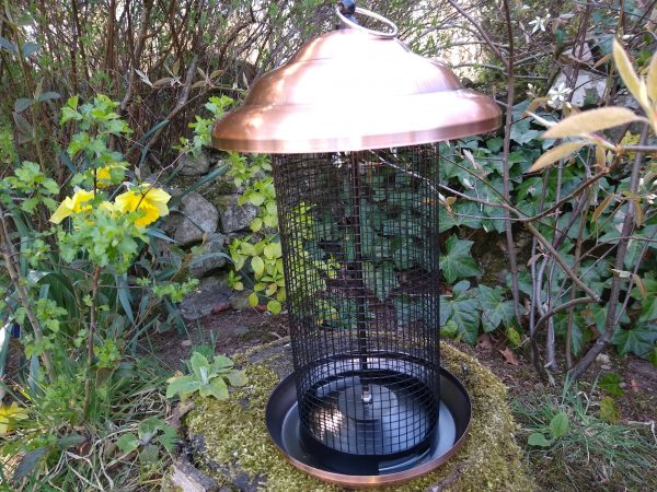 Bird Nut Feeder XL.