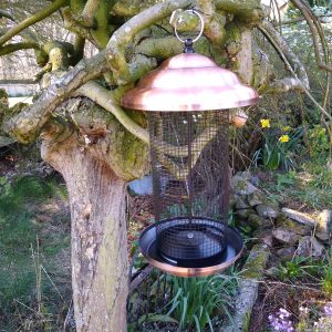 Bird Nut Feeder XL