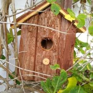 Nest Box - Rustic