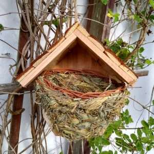 Nest with roof